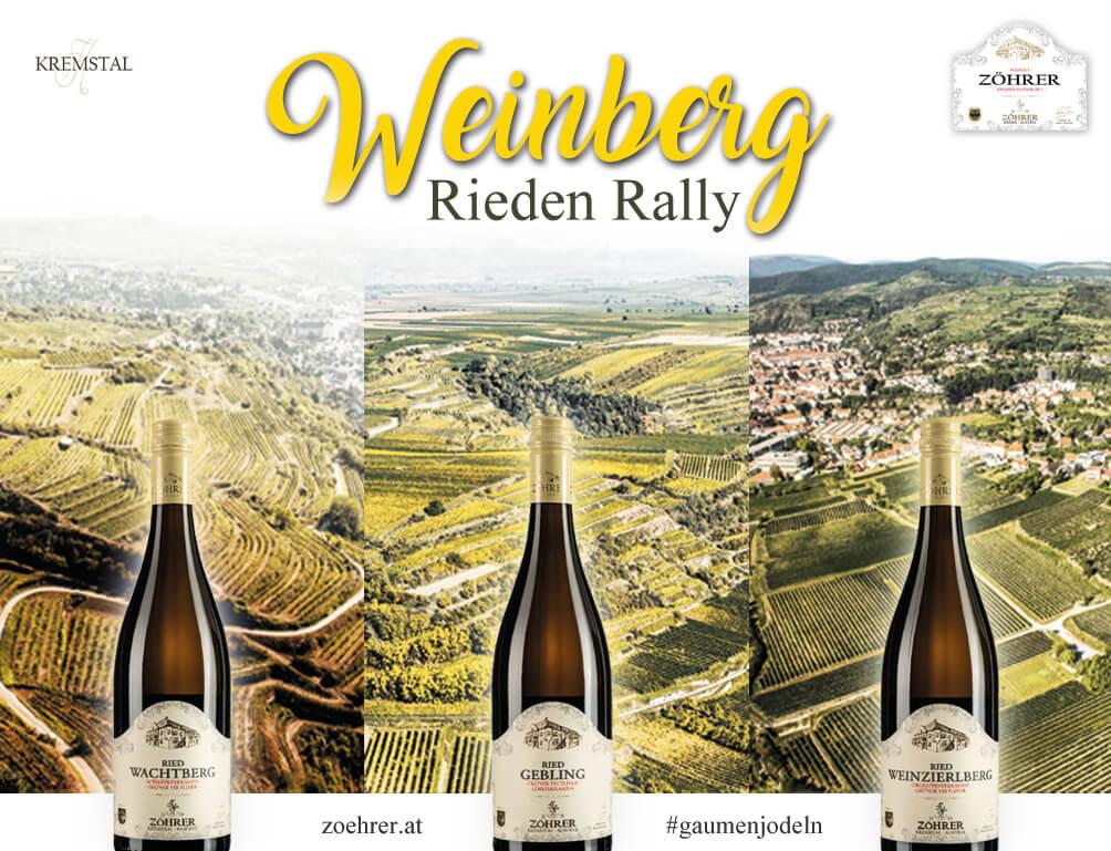 Riedenrally im Weingut Zöhrer Krems